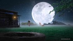 Nature Background Night Effect With Moon Full HD Background, nature background, background with moon, hd nature background, night background Blur Image Background, Desktop Background Pictures, Studio Background Images, Banner Background Images, Picsart Background, Editing Background, Night Background, Hd Background Download, Backgrounds Free