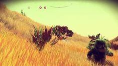 Wow, with VR this is going to be amazing: All The Freakiest Featured Creatures From 'No Man's Sky' - Maxim