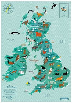 Wildlife of the British Isles Map by finchandrobin on Etsy