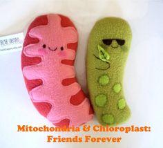 Mitochondria and Chloroplast plush set by FreshCrayons on Etsy