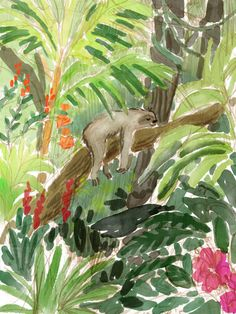 A sloth sketch for a children's book I'm working on.