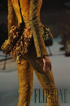 Franck Sorbier Fall-winter 2011-2012 - Couture…
