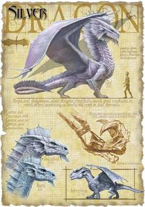Favorite dragon ever! Silver Dragon by Richard Sardinha King Neil Dnd Dragons, Cool Dragons, Dungeons And Dragons, Magical Creatures, Fantasy Creatures, Dragon Medieval, Dragon Rey, Dragon Book, Dragon Anatomy