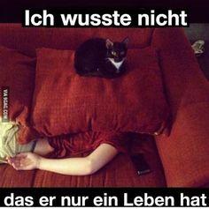 Funny                                                       …