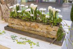 Bilder Hausmesse Januar 2016 | Willeke Floristik Centerpiece Decorations, Table Centerpieces, Flower Decorations, Garden Planter Boxes, Garden Deco, Kitchen Decor Themes, Deco Table, All Flowers, Easter Crafts