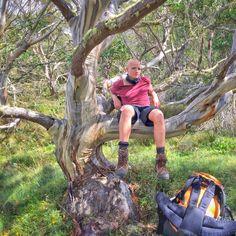 Lake Tali Karng via McFarlane's Saddle - Victoria's Alpine National Park Hiking Boots, National Parks, Victoria, Australia, Bar, Australia Beach, State Parks