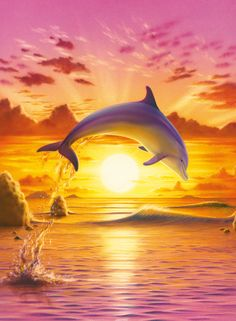 Dolphins at Sunset, fine art canvas print for sale, of dolphins family jumping out of water with sunset background, painted by Guy Rosati. Description from pinterest.com. I searched for this on bing.com/images