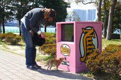 Algún día tendremos una máquina para comida de perritos