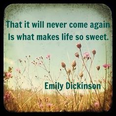 emily dickinson, That it will never come again, Is what makes life so sweet, poetry, inspirational  quotes, life, nostalgia, mortality