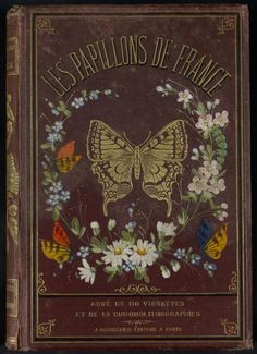 Decorative front cover of 'Les Papillons de France,' Published 1880. Editor - J. Rothschild. Institut National de la Recherche Agronomique (INRA)
