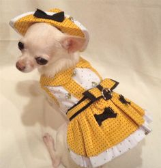 Busy Bee Jumper Dog Dress #dogdress #chihuahua http://www.doggieclothesline.com/
