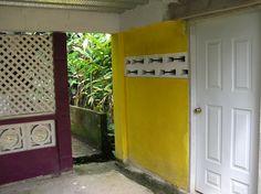Yellow Wall, Tobago (c.aks)