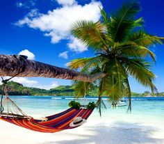 This could be you! Plan your Caribbean getaway today!