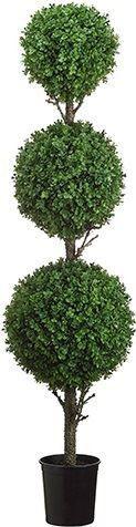 4.5' Tri Ball Boxwood Topiary