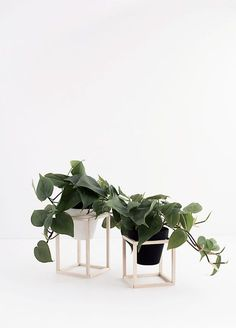 DIY Mini Wood Plant Stands