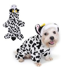 b02b4c696241 1031 Best Dog Apparel   Accessories images