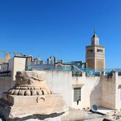 """Mi piace"": 97, commenti: 2 - ☆ travel tales ☆ elisabetta ☆ (@freesoulontheroad) su Instagram: ""View of Zaitouna Mosque from a terrace in Tunis old town - Tunis  #tunis #mosque #terrace #bluesky…"""