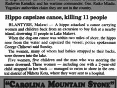 Hippo capsizes canoe, Killing 11 people ... 27 May 2002