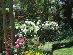 Garden bouquet.