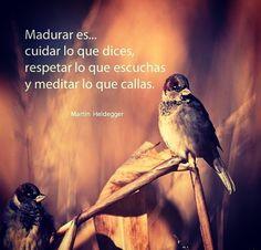 Madurar es Sparrow Bird, Creatures, Birds, Earth, Couples, Pictures, Photos, Animals, Sparrows