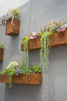 Stunning Vertical Garden for Wall Decor Ideas Do you have a blank wall? the best way to that is to create a vertical garden wall inside your home. A vertical garden wall, also called… Continue Reading → Jardin Vertical Diy, Vertical Garden Design, Vertical Planter, Garden Wall Designs, Beautiful Home Gardens, House Beautiful, Landscape Lighting Design, Landscape Designs, Walled Garden