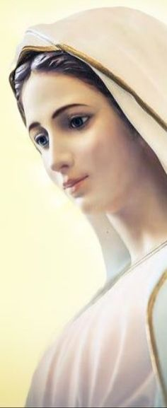 Pictures Of Jesus Christ, God Loves You, Mother Mary, Virgin Mary, Gods Love, Madonna, Cathedral, Religion, Christian