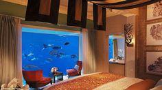 Khloé Kardashian ha scelto di dormire all'Hotel Atlantis The Palm Dubai in una suite sott'acqua con vista sull'enorme acquario che contiene circa 66.000 pesci di specie diverse. E i prezzi? Per la suite da 8.000 a 20.000 dollari per notte con maggiordomo 24/7. Ma è possibile possibile pernottare all'Atlantis anche con budget ben più accessibili!  -cosmopolitan.it