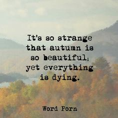 It's so strange that autumn is so beautiful, yet everything is dying.