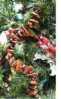 A Christmas tree good enough to eat may be made by trimming it with oranges, bananas, lemons, grapes, apples and nuts. Little figures made of raisins and prunes can be wired then also hung upon the branches. Do not hang any presents upon the Christmas tree, but fill a small tub with sawdust, and in it place the gifts wrapped in mystifying bundles securely tied. On Christmas morning give each member of the household a fishing-rod and let each one in turn take a chance at the bundles with it…