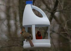 Deterjan Kutusundan Kuş Yemliği