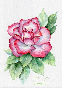 Rose pink green Flowers Watercolor Original Painting from