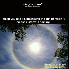 My science teacher said this is wrong. He said when there is a ring around the sun/moon, it means its cold enough up in that atmosphere for snow. But by the time it enters ours, it melts before it gets close enough to see/feel.