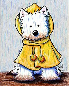 Westie Print featuring the drawing Rainy Day Westie by Kim Niles