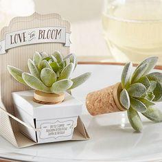 Love in Bloom Succulent Bottle Stopper