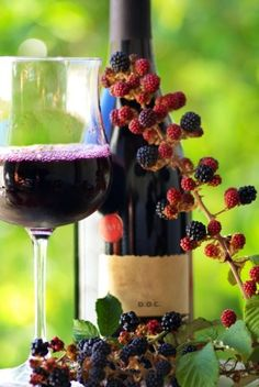 how to make blackberry wine