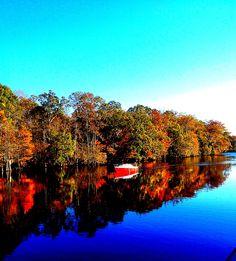 Old Black Water, South Carolina