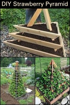 This Project Gives You Home Grown Strawberries in a Limited Garden Space garden How To Make A Strawberry Pyramid Planter Vertical Vegetable Gardens, Vegetable Garden Planner, Vegetable Gardening, Strawberry Garden, Strawberry Patch, Strawberry Planters, Deco Nature, Garden Boxes, Plantation