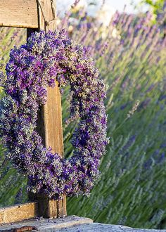 Lavender flowers dried in a beautiful wreath in Sequim, Washington. Photo Courtesy of Olympic Lavender Farm Lavender Cottage, Lavender Garden, Lavender Scent, Lavender Blue, Lavender Fields, Lavender Flowers, Purple Flowers, Color Lavanda, Corona Floral