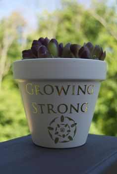 Game Of Thrones House Tyrell Growing Strong Flower Pot Planter Succulent Planter Gardening Home Decor Gift by TheDirtyPot on Etsy
