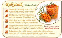 Rakytník - nepodceňte účinky! Recept:olej,čaj | Peknetelo.eu