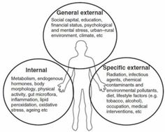 Epigenetics and the Exposome: Environmental Exposure in Disease Etiology