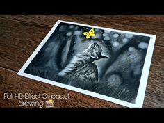 Oil Pastel Drawings, Drawing For Beginners, Water Drops, Cats, Youtube, Flowers, Gatos, Kitty Cats, Cat
