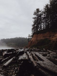 Smuggler's Cove, OR