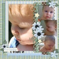 A Project by scrappin-grandma from our Scrapbooking Gallery originally submitted 05/03/12 at 09:19 PM