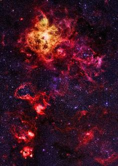 Tarantula Nebula in the Large Magellanic Cloud