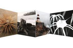 Art Cards, Stationery Set, Nautical Theme, Photo Greeting Cards, I Card, Natural Beauty, Hawaii, Australia, Fine Art