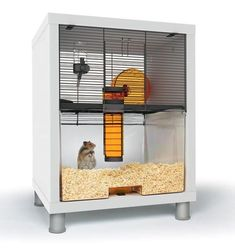 Qute Hamster and Gerbil Cage is a stylish alternative to most hamster cages. A luxury hamster house that takes just one minute to clean. Hamster Habitat, Hamster Care, Hamster Toys, Hamster Stuff, Pet Stuff, Gerbil Cages, Small Animal Cage, Small Animals, Pet Resort