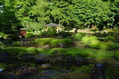Teichgarten-web-4758.jpg 1000 × 667 bildepunkter