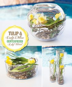 * DIY Tutorial: Tulip & Curly Willow Centerpieces ~ here is a gorgeous, yet very easy and budget friendly centerpiece idea to share using some of my favorite materials: tulips, curly willow, and rocks! The result? Fresh and earthy floral arrangements with a lot of impact but minimal product.