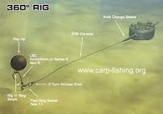 carp rigs - Google Search